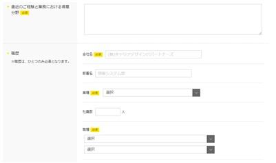 type IT派遣・WEB登録フォーム・職歴
